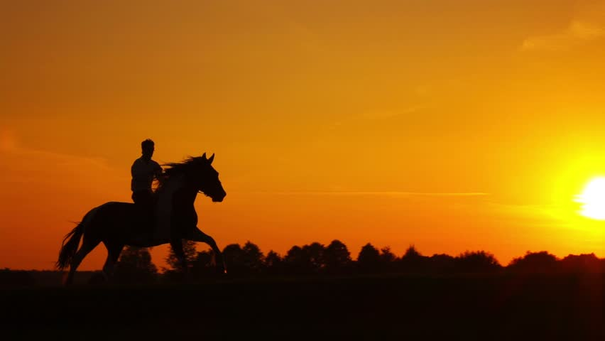Horseman riding on hourse galloping on sunset in backlight, slowmotion.   Shutterstock HD Video #18353611
