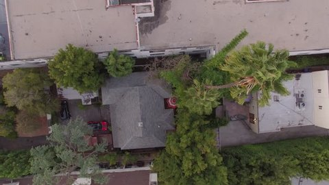Bird's eye view aerial shot of urban residential street - Professional drone looking towards street with cars and palm tree, flying straight down towards tree - daytime dusk