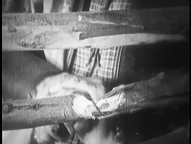 Close-up of bleeding hands cutting through wooden fence with knife