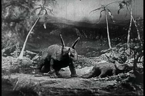 Two typed of dinosaurs fight in a jungle, the three horned triceratops winning over the allosaurus in 1925. (1920s)