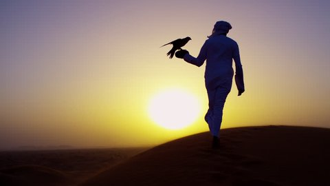 Sunset silhouette Arabic man with bird of prey on desert sands
