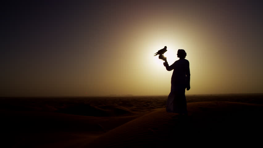 Silhouette of Middle Eastern falconer in desert with his bird of prey at sunrise