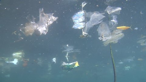 Ocean scenery rubbish and pollution, floating plastic, environmental, trash, garbage, litter, in bluewater, HD, UP24026