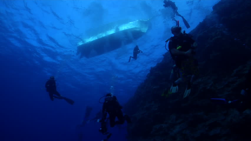 Group of scuba divers swimming on deep water wall and cavern tunnel in Palau, Micronesia, HD, UP32513 | Shutterstock HD Video #18800255
