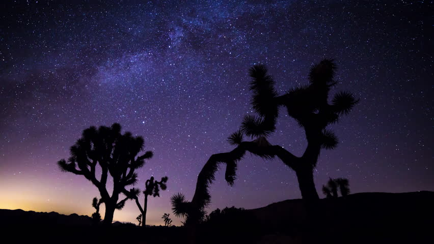 Joshua Trees and Milky Way Timelapse during Perseid Meteor Shower from Joshua Tree National Park in California
