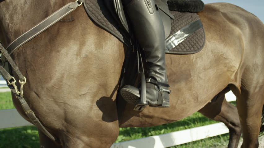 SLOW MOTION CLOSE UP: Big strong dark brown gelding trotting on manege. Female rider horseback riding a strong powerful brown stallion horse, training dressage in outdoors riding arena on sunny day