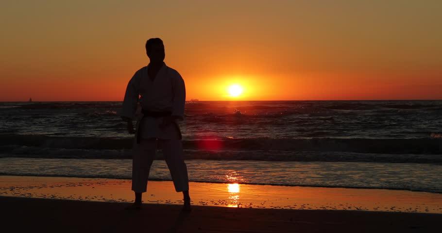 Resultado de imagen de karate beach