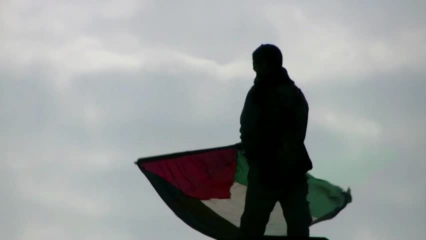 CAIRO, EGYPT - JAN 25: Protester on a light pole waving the Palestinian flag in Tahrir square, Cairo, Egyp on January 25, 2012, anniversary of the Egyptian Revolution.