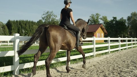 SLOW MOTION CLOSE UP: Beautiful big dark brown gelding cantering in sandy manege. Dressage female rider horseback riding a strong powerful brown stallion horse, galloping in outdoors riding arena