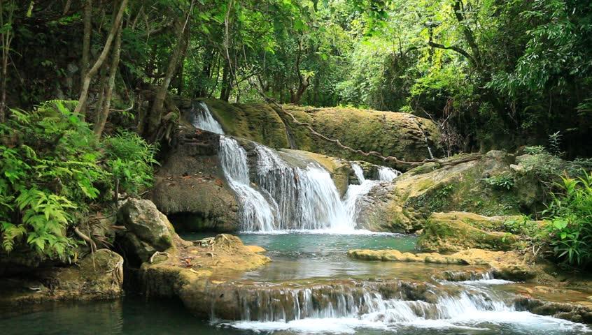 Tropical Rainforest Paradise Background. Mountain River Flows Through Green Jungle Lush ...