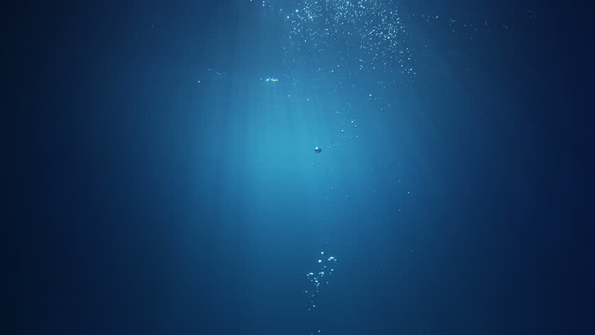 Under water air bubbles rising from deep water up to the surface. | Shutterstock HD Video #19373890