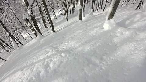 FIRST PERSON VIEW CLOSE UP: Unrecognizable snowboarder riding fresh powder snow in snowy mountain forest. Freeride snowboarder snowboarding in perfect powder snow off piste in mountain ski resort