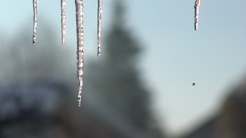 Stock Video Clip of Icicle hanging from the roof. Dripping icicles ...