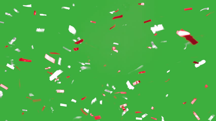 Red and White colored Confetti falling slow an beautiful in front of a green screen in 4K resolution