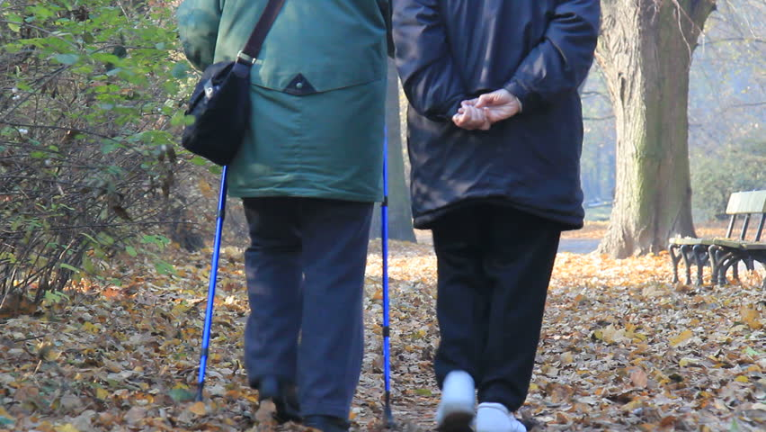 Elderly woman exercise in a park | Shutterstock HD Video #1977196