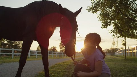 SLOW MOTION, CLOSE UP: Cheerful cute child kissing and caressing big powerful dark bay gelding at magical sunset. Happy kid squatting on meadow, cuddling strong stallion on countryside horse ranch