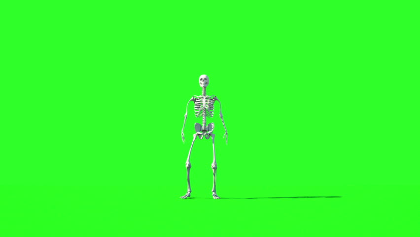 Crazy skeleton funny dancing  GI render  Green… - Royalty