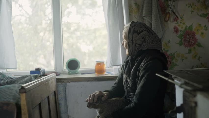 Side view of elderly woman petting cat in window | Shutterstock HD Video #20081230