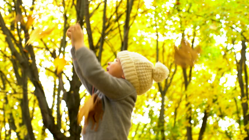 Little boy cathing yellow leaves in autum forest