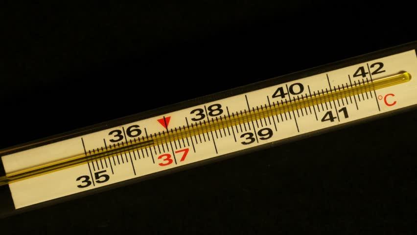 Resultado de imagem para thermometer to measure a table,