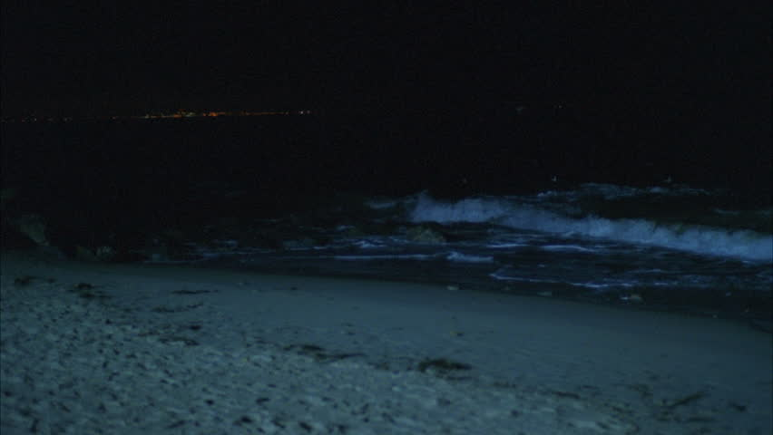 Night Ocean Waves Rolling up Stock Footage Video (100% Royalty-free)  21114460   Shutterstock