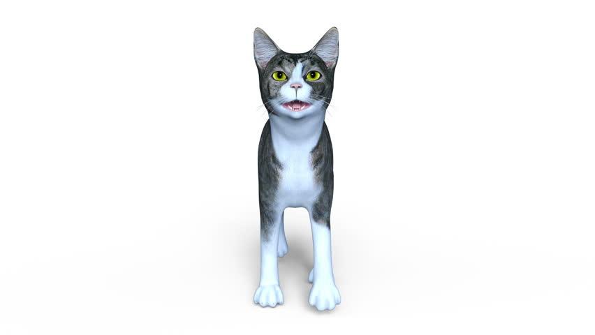 3D CG rendering of a walking cat | Shutterstock HD Video #21189490