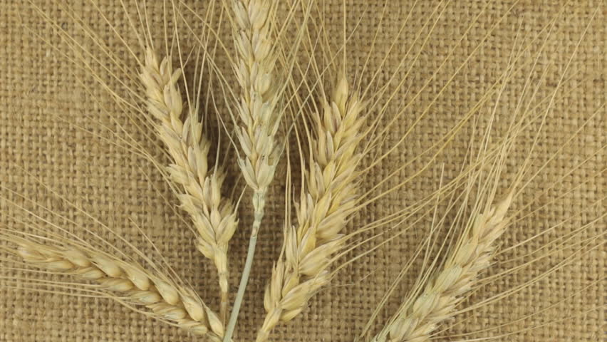 wheat sack wall decor - 852×480