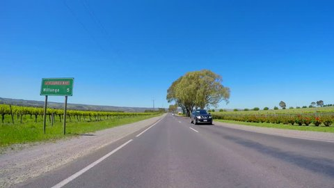 MCLAREN VALE, SOUTH AUSTRALIA - NOVEMBER 5, 2016: Automobile POV driving along Main Road, McLaren Vale, South Australian winery region, past wineries with views  of grapevines, fast motion.