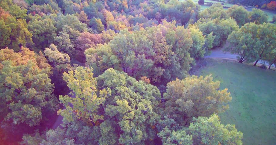 Aerial: autumn forest in Lleida Pyrenees, Vall de Lord | Shutterstock HD Video #21252700