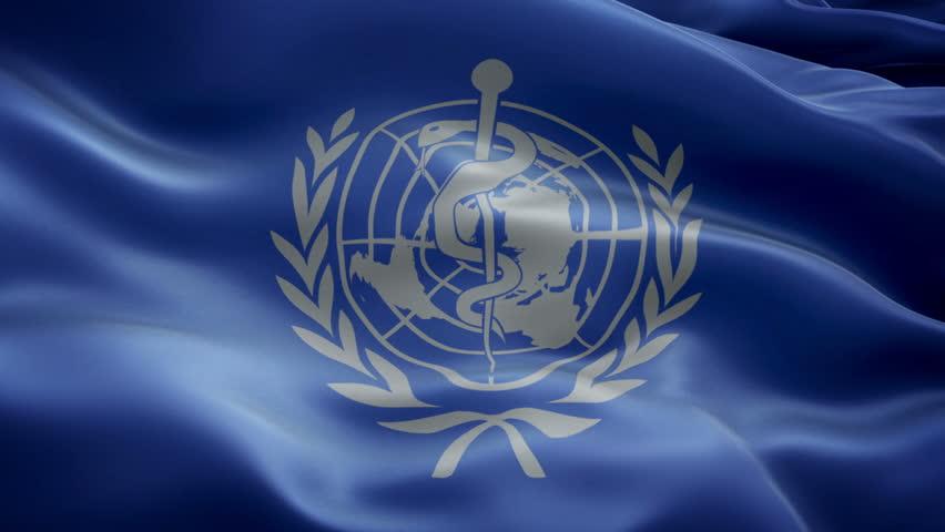 New York, USA - 14 November 2016 - Animated logos of WHO. Flag of WHO (World Health Organization)