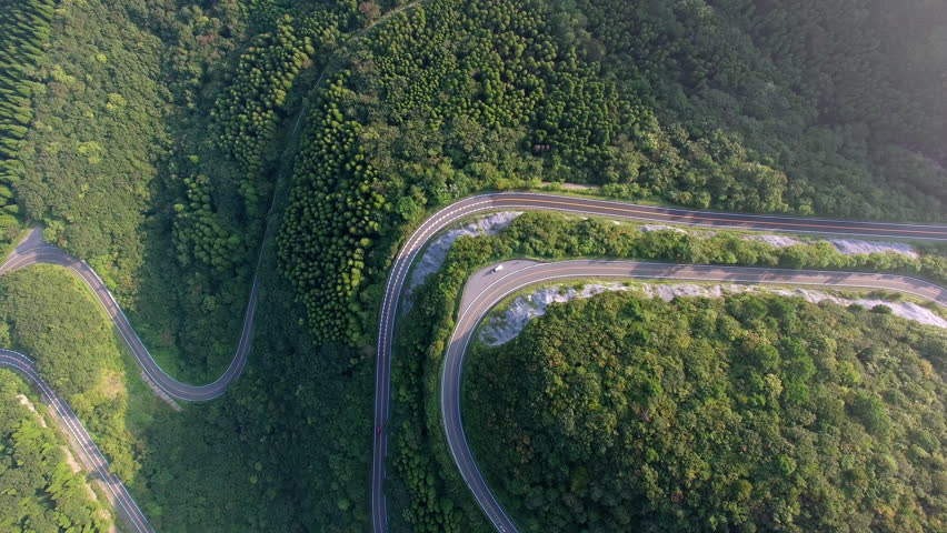 Aerial view of winding road in forest  | Shutterstock HD Video #21583150