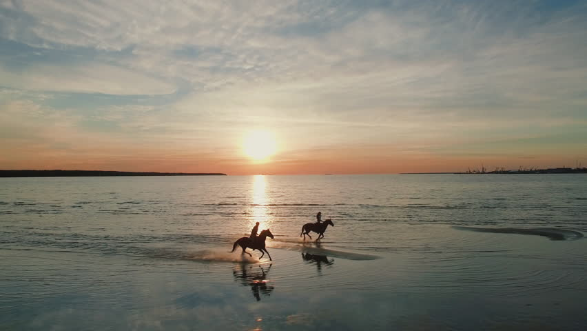 Two GIrls are Riding Horses on a Beach. Horses Run Towards the Sea. Beautiful Sunset is Seen in this Aerial Shot.   Shutterstock HD Video #21794653