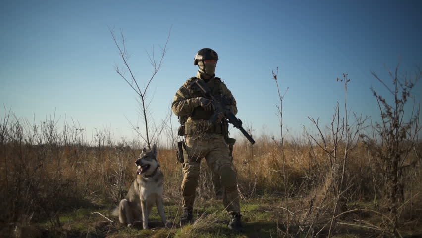 Airsoft soldier with a rifle and NATO ammunition stands with a dog in the field