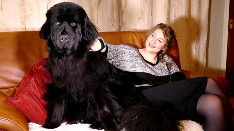 A pretty young woman sitting on the sofa and stroking her female Newfoundland dog.