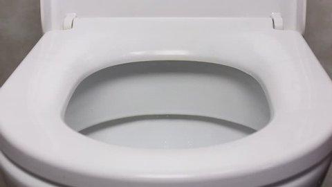 flushing and closing toilet. (close-up)