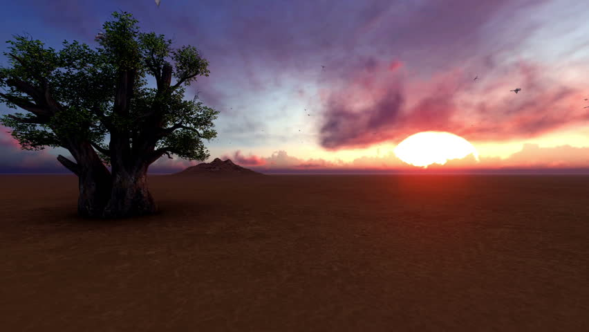 Single Baobab Tree In Africa At Sunset Birds Flying