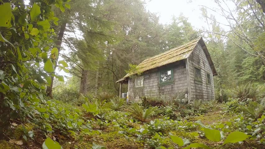 Old Trappers cabin in the woods on Vancouver Island