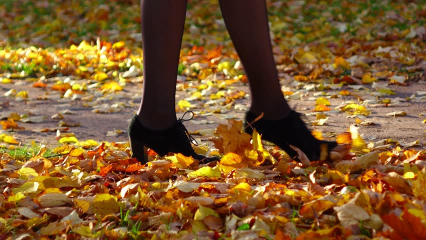 Woman take walk at autumn park, go and kick bright colored autumn foliage, close up legs and shoes view. Graceful lady wear black tights and high heels. Soft dry yellow and orange maple leaves blanket
