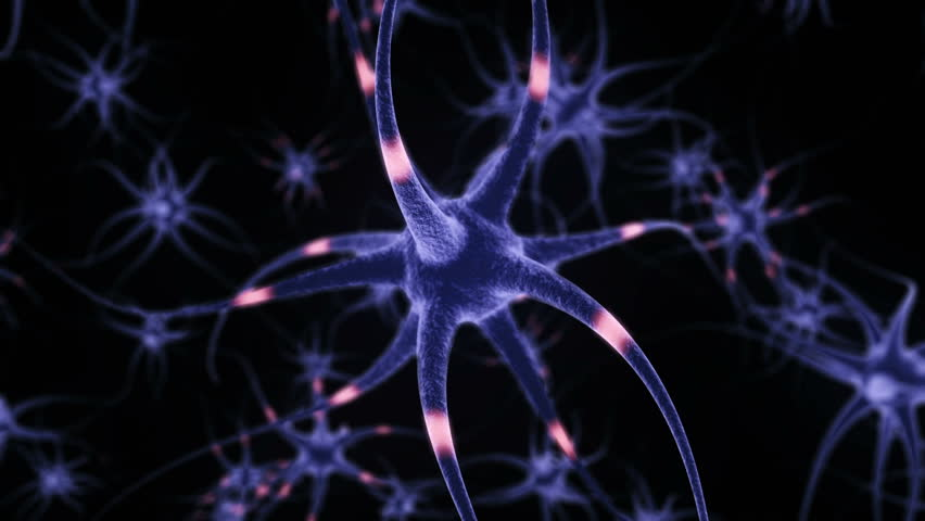 Neuron Cells, with sending informations, loop-able simulation (3d rendering) | Shutterstock HD Video #23752480