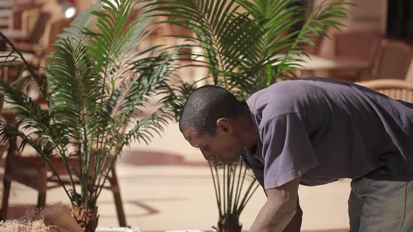 HAVANA, CUBA - DECEMBER 23, 2011: Gardener at work outdoors at sunny day | Shutterstock HD Video #24569360