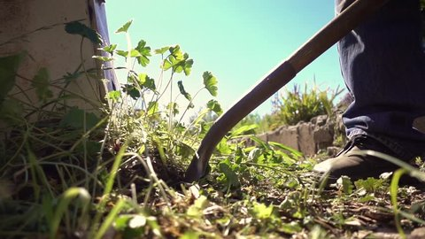 Farmer gardener digging out weeds in garden using shovel. Closeup, slow motion.