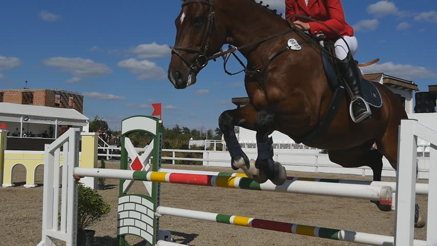 KHARKIV, UKRAINE - SEPTEMBER 10, 2016: Unrecognizable professional female jockey rides on horseback. Horse is galloping and jumping through a barrier in competition. Slow motion Close up #24731390