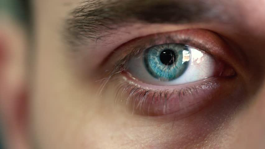 Beautiful blinking male eye close-up | Shutterstock HD Video #24853973