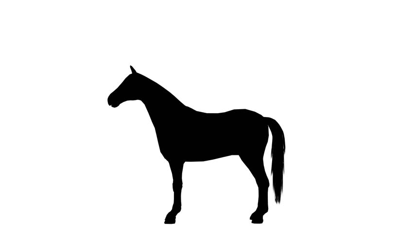 Black silhouette of animated galloping horse. Alpha channel. Alpha matte. 4K.