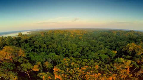 Aerial Shot Of Amazon Rainforest at Sunset