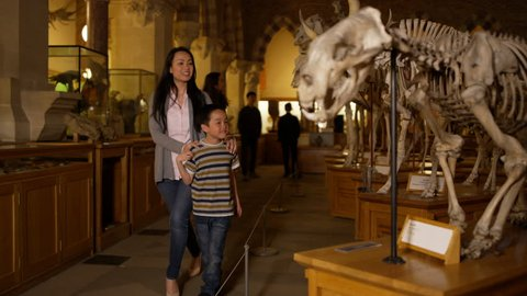 4K Mother & son looking at dinosaur skeleton in natural history museum