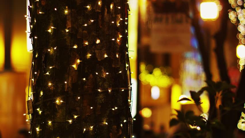 TOKYO, JAPAN - DECEMBER 13, 2011: Christmas Light up along Omote Sando-dori Street | Shutterstock HD Video #25323170