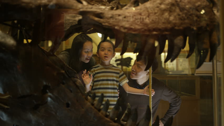 4K Family in natural history museum looking through glass at dinosaur skull