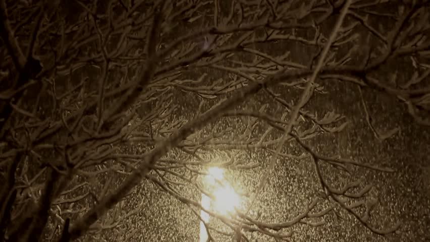 Slow motion video Snowflakes. Jerusalem, Israel   Shutterstock HD Video #25563260