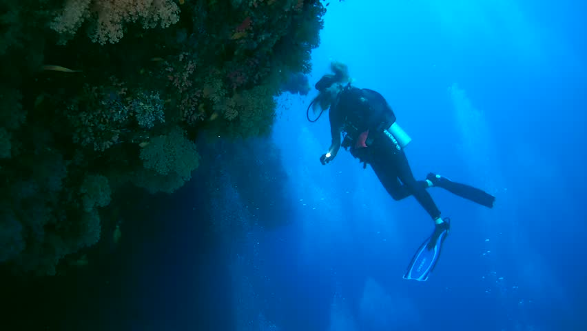INDIAN OCEAN, MALDIVES - MARCH 2017: Young woman scuba diver looks at a beautiful coral reef with soft corals, Indian Ocean, Maldives | Shutterstock HD Video #25649390